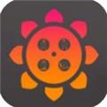 向日葵app视频在线观看