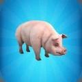 一头猪模拟器