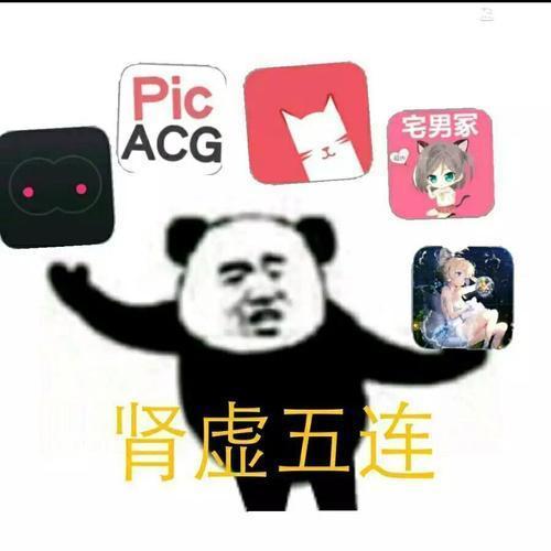 肾虚五连app蓝奏云