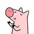 资源猪搜索引擎